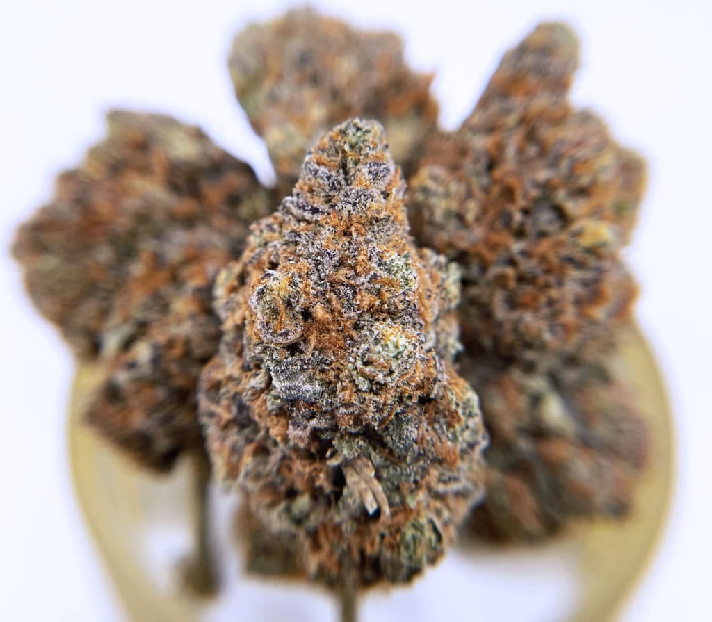district connect dc mango sherbet weed photo