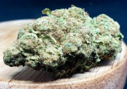 lucky chuckie dc la confidential weed photo