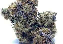 select co op dc purple slushy weed photo