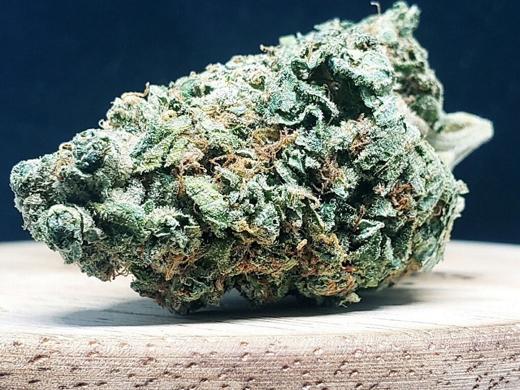lucky chuckie dc ayahuasca weed photo