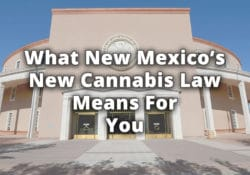 what new mexicos new cannabis law means for you
