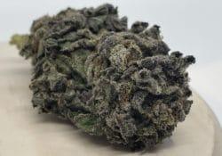athenas gifts dc black diamond weed photo
