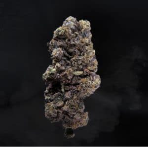 exotic blooms z41 weed photo
