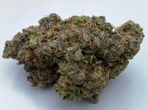 heady club dc sherblato weed photo
