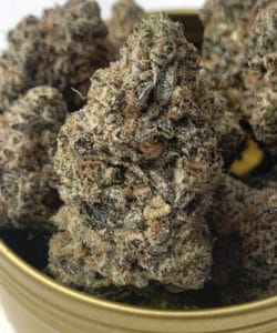 puff kings dc animal mints weed photo