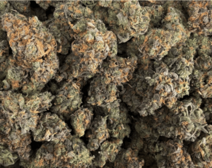District Connect's Blueberry Gas