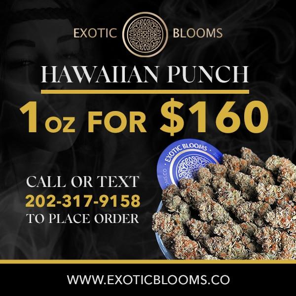 exotic blooms hawaiian punch ad