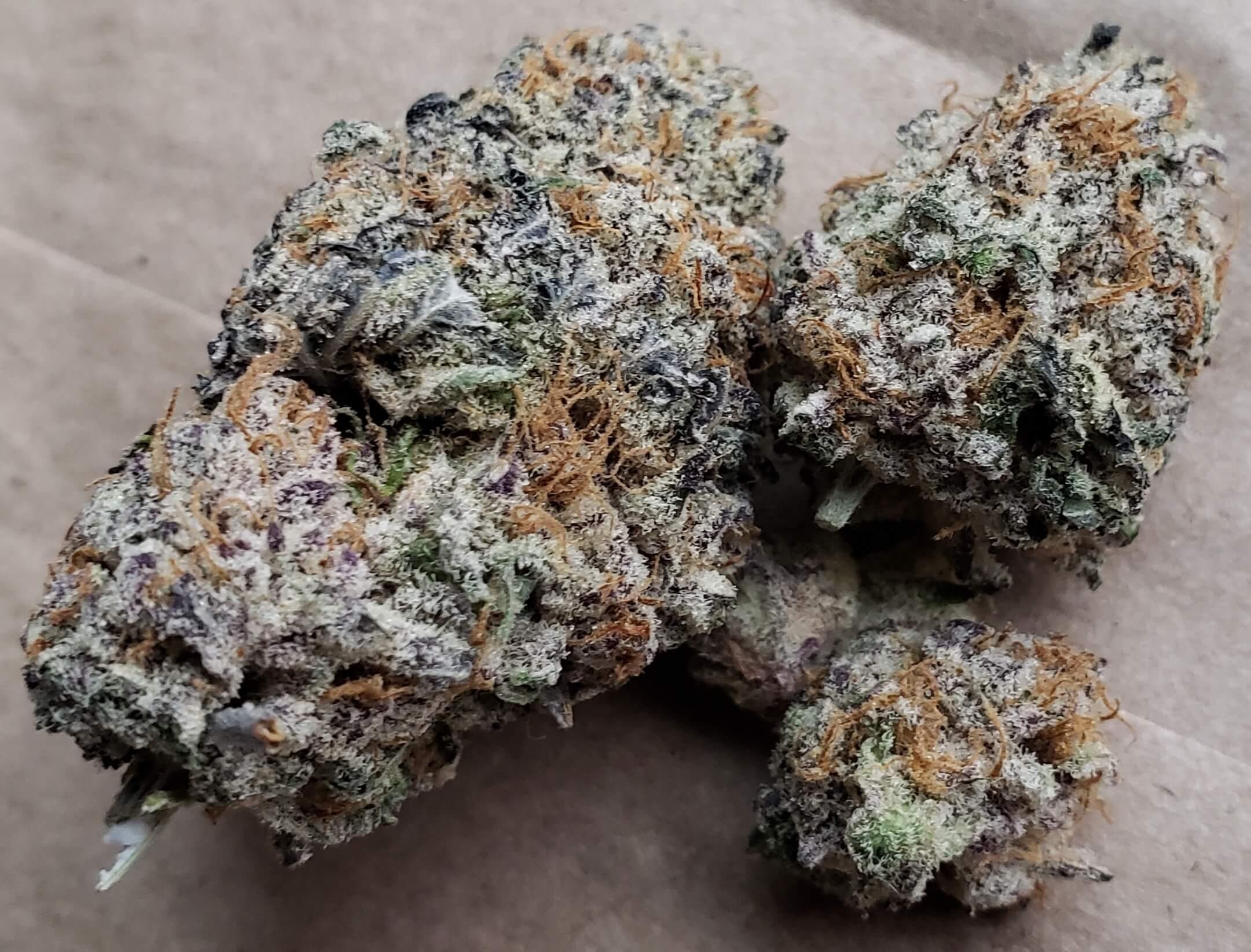 Bagged Buds DC Sucker Punch marijuana flowers