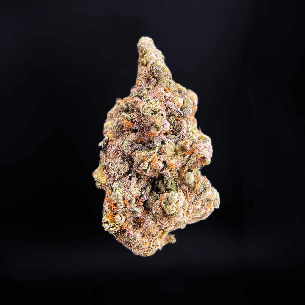 biscotti x sundae driver exotic blooms weed stock photo