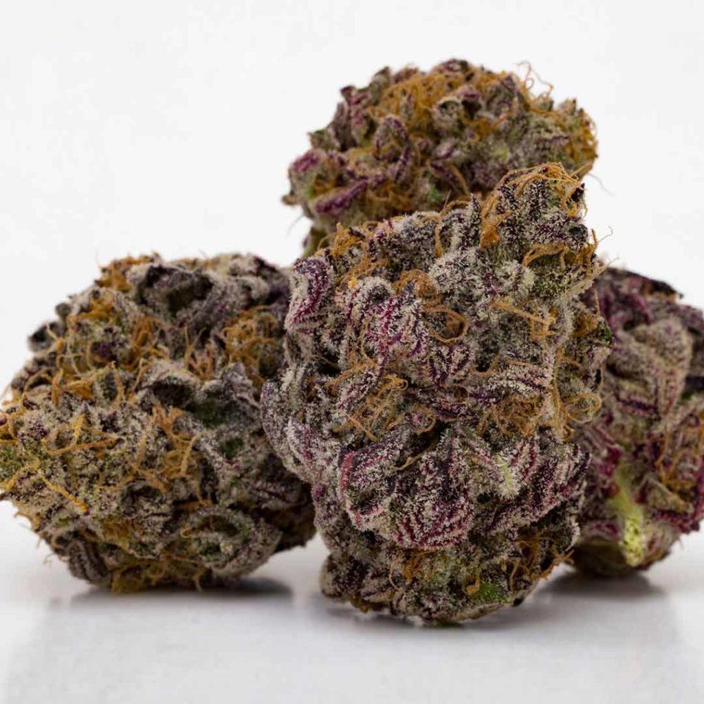granddaddy purple select co-op weed photo