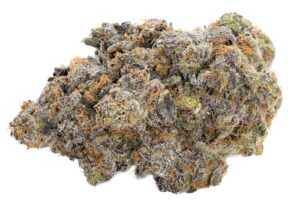 green kings apple fritter weed photo