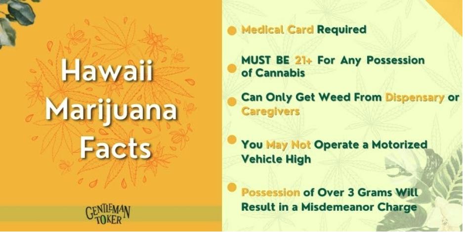 Hawaii Marijuana Facts