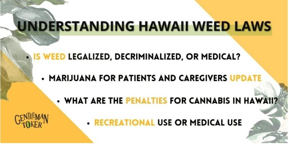 Understanding Hawaii Weed Laws
