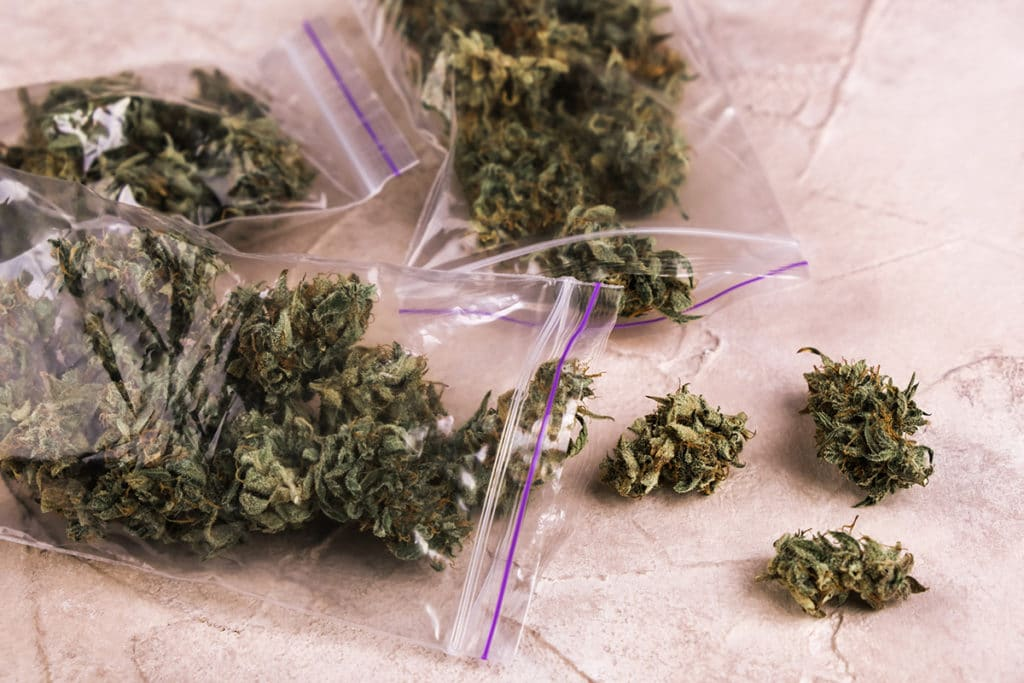 weed buds in zip lock bags photo