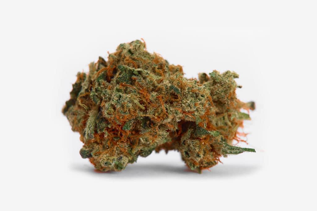 strawberry cough cannabis bud photo