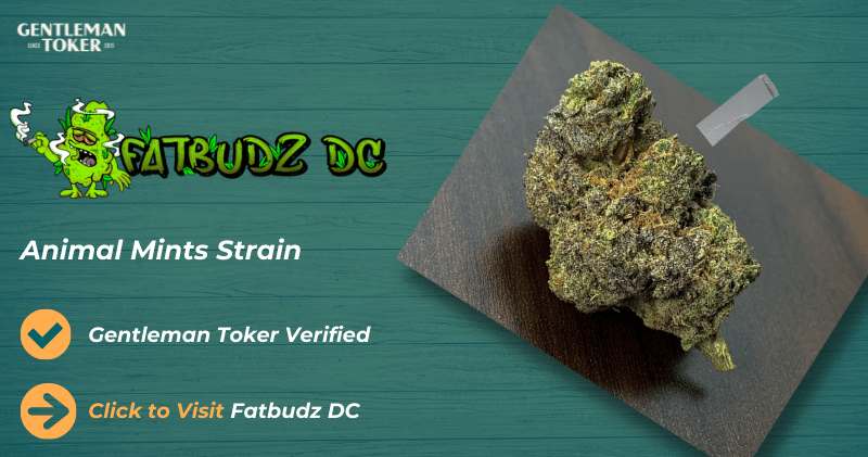 weed dispensary in dc