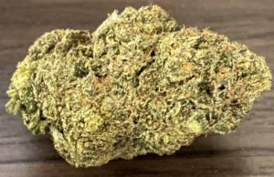cookies gary payton weed photo